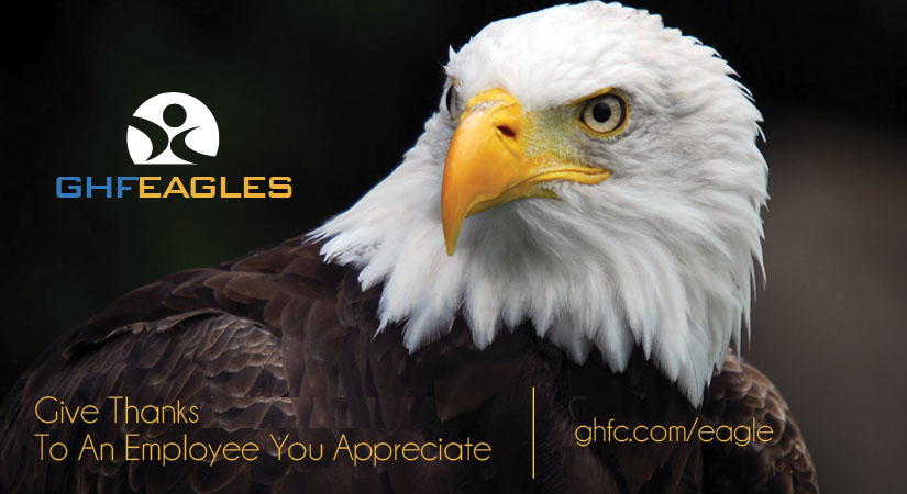 Eagles at GHF