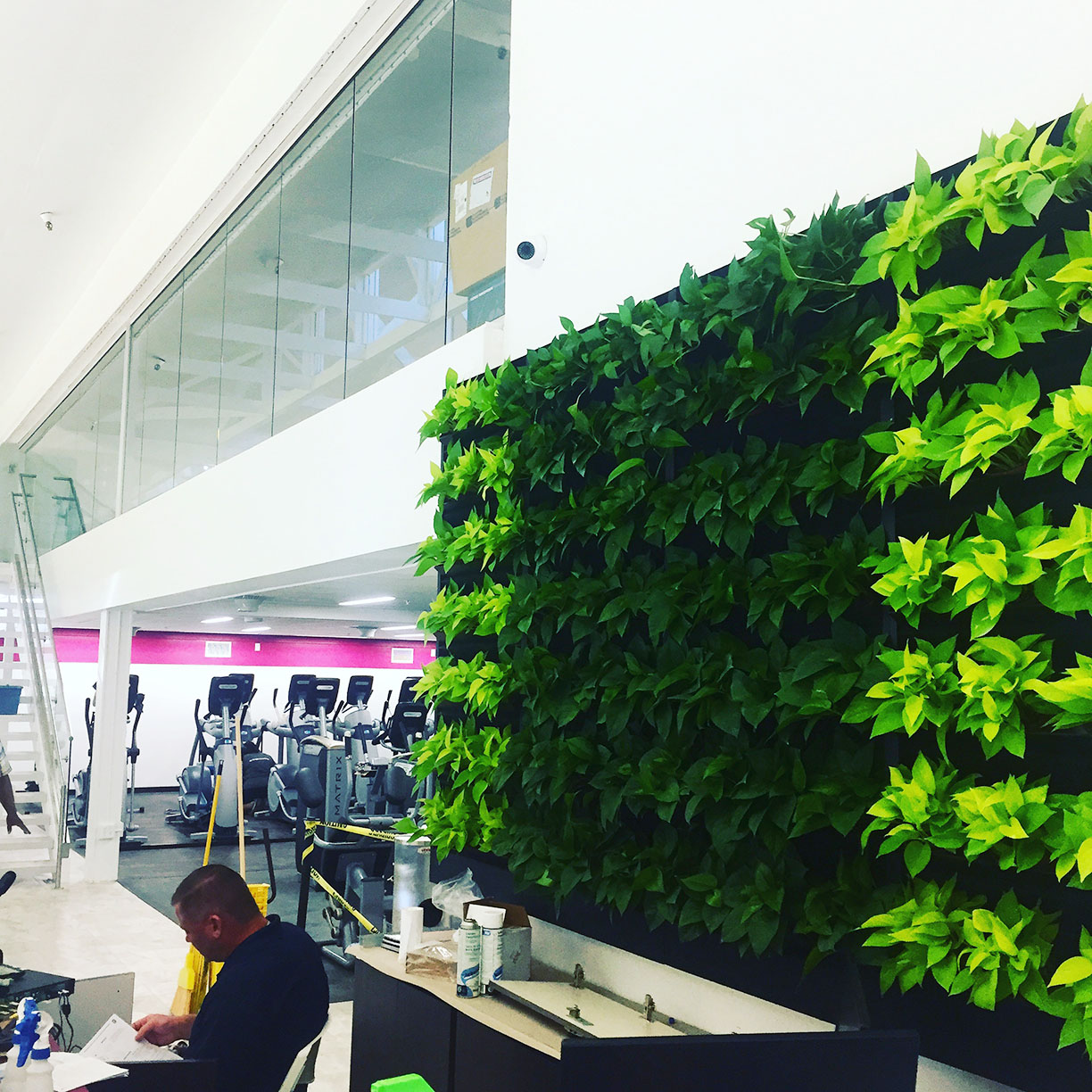 GHF WC Living Wall