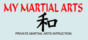 My Martial Arts Instructor