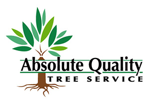 Absolute Quality Tree Service